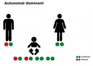Autosomal dominant transmission mode
