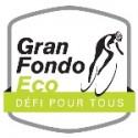 Logo_gfeco (2)